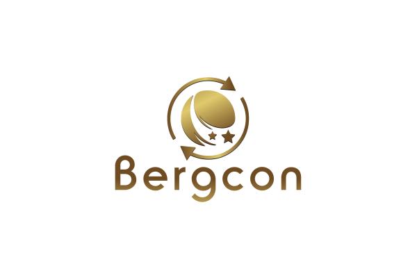 Bergcon Business Analysis